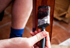 Opinião do close up da escova de pintura na mão que pinta a placa de madeira na pintura marrom Conceito home da renovação e da pi Fotografia de Stock