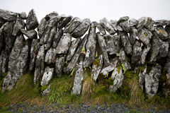 Opinião do close-up da parede de pedra, Irlanda Fotografia de Stock Royalty Free
