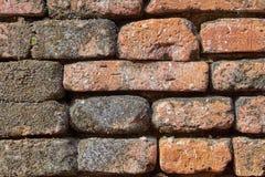 a opinião do close-up da parede de tijolo muito velha suja vermelha textured o fundo Imagens de Stock