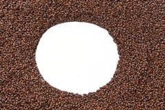 Opinião do close up de grões do malte da cevada Ingrediente para a cerveja Backgro fotos de stock royalty free