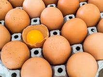 Opinião do close-up do ovo cru da galinha Cada ovo é um ovo da galinha e tem um ovo a rachar-se Imagens de Stock