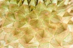 Opinião do close-up do espinho do durian imagens de stock royalty free