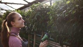 Opinião do close up o jardineiro fêmea atrativo novo em plantas molhando uniformes com a mangueira de jardim na estufa filme
