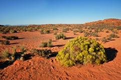 Opinião do deserto Fotos de Stock Royalty Free