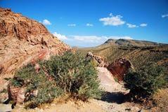 Opinião do deserto Fotografia de Stock Royalty Free