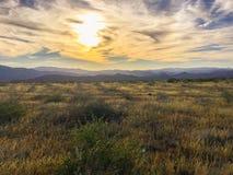 Opinião do deserto Fotografia de Stock