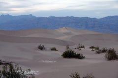 Opinião do deserto de Death Valley Imagem de Stock Royalty Free