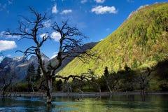 Opinião do dia das montanhas na província de Sichuan China Fotografia de Stock