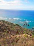 Opinião do farol de Diamond Head Crater em Honolulu Havaí Fotos de Stock Royalty Free