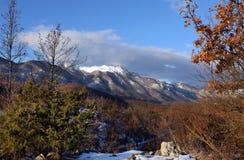 Opinião do inverno Fotos de Stock Royalty Free
