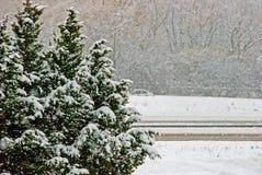 Opinião do inverno Fotografia de Stock