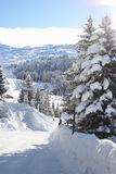 Opinião do inverno de uma estrada da montanha Foto de Stock Royalty Free