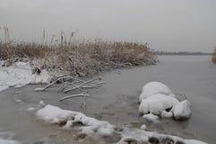 Opinião do inverno do lago da costa de Pogoria imagem de stock royalty free