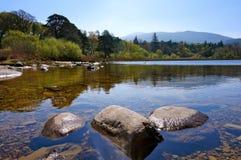 Opinião do lago Imagens de Stock Royalty Free