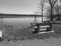 Opinião do lago Foto de Stock