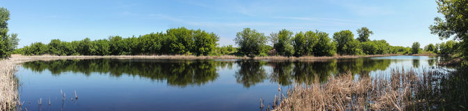 Opinião do lago Fotografia de Stock