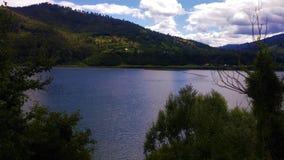 Opinião do lago e de árvores imagem de stock royalty free