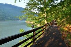 Opinião do lago do passeio de madeira imagem de stock royalty free