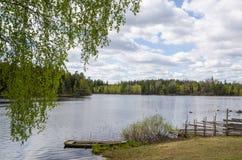 Opinião do lago springtime fotos de stock royalty free