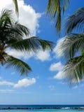 Opinião do mar Fotos de Stock Royalty Free
