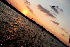Opinião do mar do por do sol Foto de Stock Royalty Free