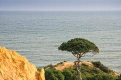 Opinião do mar na costa portuguesa do Algarve fotos de stock