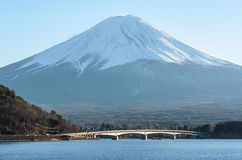 Opinião do Mt Fuji do lago Kawakuchigo Imagem de Stock