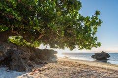 Opinião do nascer do sol no Anda Long Beach branco na ilha de Bohol Fotos de Stock Royalty Free