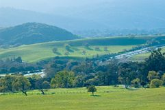 Opinião do norte da mola de Califórnia Fotografia de Stock