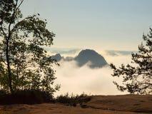 Opinião do outono através dos ramos ao vale enevoado dentro da aurora Manhã nevoenta e enevoada no ponto de opinião do arenito no Imagens de Stock