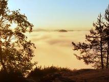 Opinião do outono através dos ramos ao vale enevoado dentro da aurora Manhã nevoenta e enevoada no ponto de opinião do arenito no Imagens de Stock Royalty Free