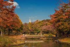Opinião do outono do parque de Yoyogi imagens de stock royalty free