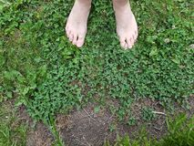 Opinião do pé Foto de Stock