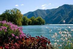 Opinião do parque nas montanhas Imagens de Stock