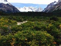 Opinião do Patagonia foto de stock royalty free