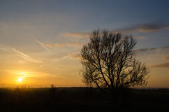 Opinião do por do sol Foto de Stock