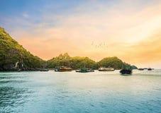 Opinião do por do sol e voo dourados bonitos do pássaro do navio de cruzeiros na baía de Halong, Vietname imagem de stock royalty free