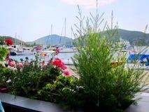 Opinião do porto de Grécia, Chalkidiki com os barcos de navigação através das flores fotos de stock