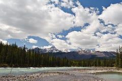 Opinião do rio de Athabasca Fotos de Stock Royalty Free