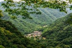 Opinião do templo Fotografia de Stock