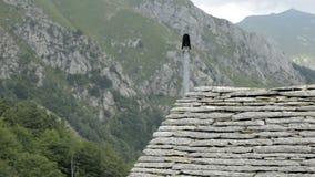 Opinião do verão da parte superior dos cumes suíços perto de Locarno, a seção italiana de Suíça vídeos de arquivo