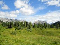 Opinião do verão dos cumes perto de Ampezzo, Itália Fotografia de Stock