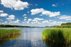 Opinião do verão no lago Fotografia de Stock Royalty Free