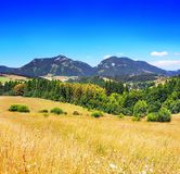 Opinião do verão do prado com montes, Pravnac e Lomy de Chocsky fotos de stock