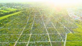 Opinião do zangão do cemitério denso no dia brilhante ensolarado 4K video estoque