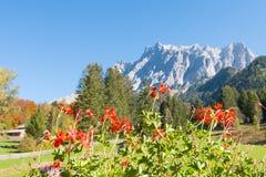 Opinião dos cumes de Zugspitze de Ehrwald, Tirol, Áustria fotografia de stock