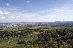 Opinião dos vinhedos de Viena Imagem de Stock Royalty Free