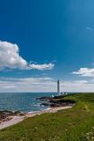 Opinião escocesa da costa leste no dia claro Imagem de Stock Royalty Free