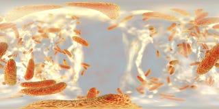 Opinião esférica do panorama dentro do biofilm do Klebsiella resistente aos antibióticos das bactérias Imagens de Stock