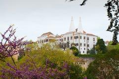 Opinião externo do palácio nacional de Sintra, Portugal Fotos de Stock